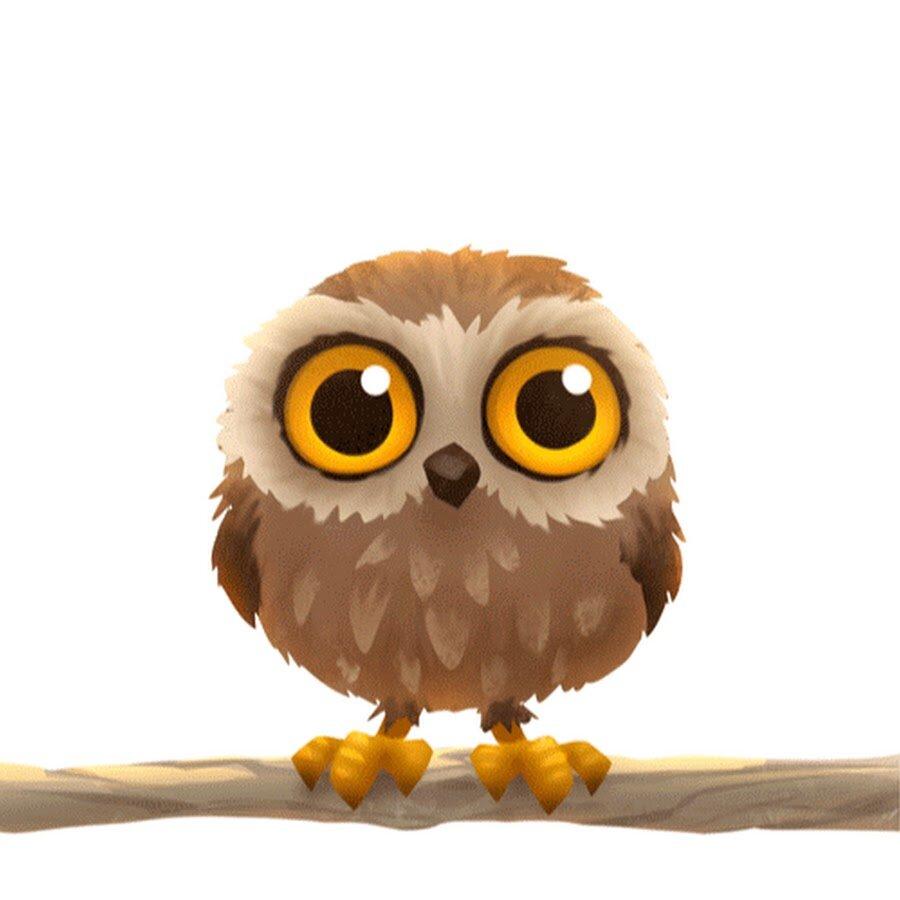 Картинки для, совы картинка анимация