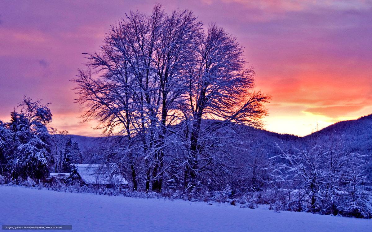 лучшие картинки зимы на рабочий стол знімку, зимовий