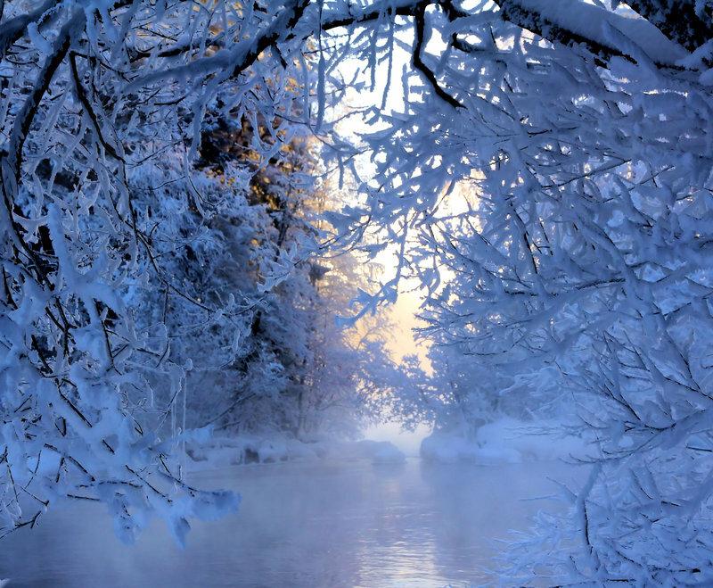 Днем рождения, картинка гиф зимний лес