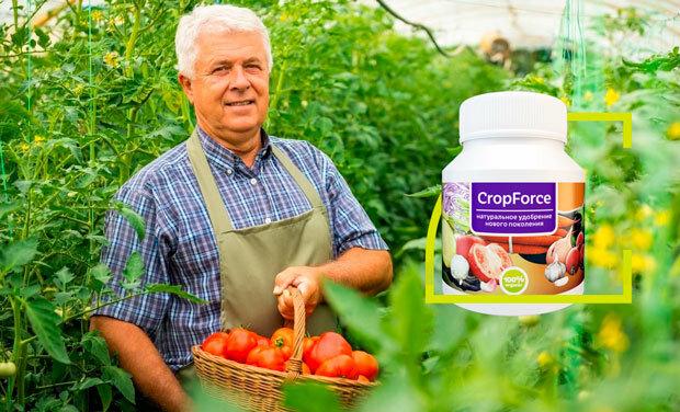 Биоудобрение CropForce в Грозном