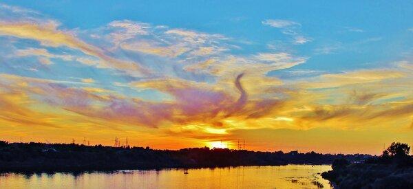 Жар птица в небе на закате