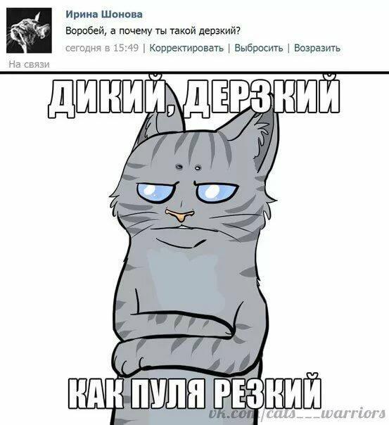вашему мемы коты воители советских электролитических