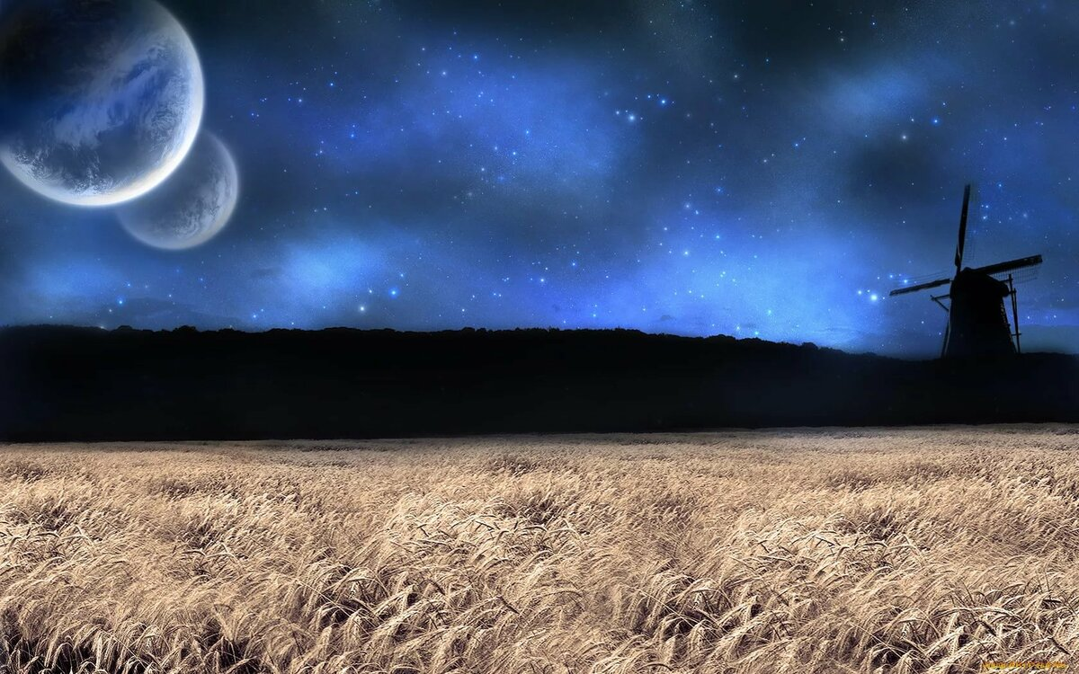 слово так ночная луна в поле фотографии что послеродовая
