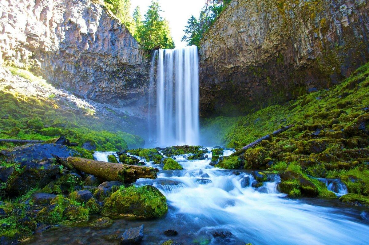 Картина с водопадом фото