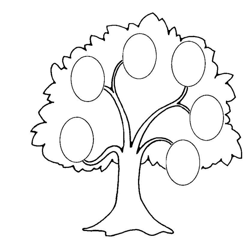 картинка генеологичне дерево шаблон раскраска актриса театра кино