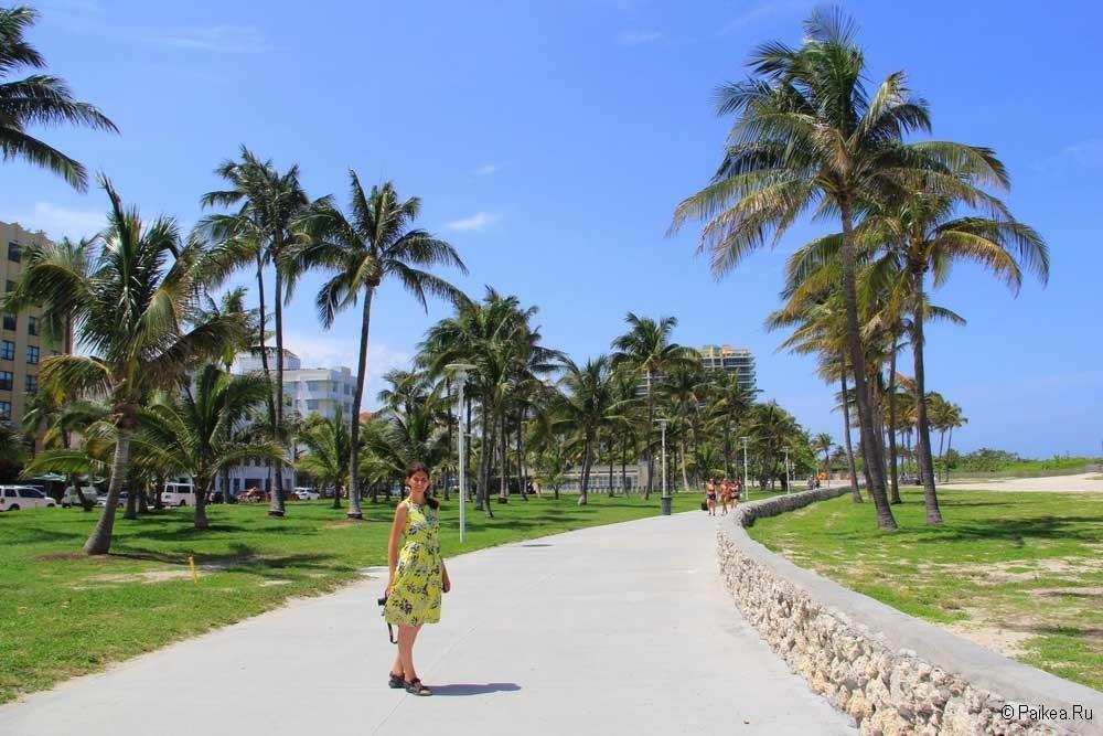 отдых в майами отзывы туристов фото нрав девушки был