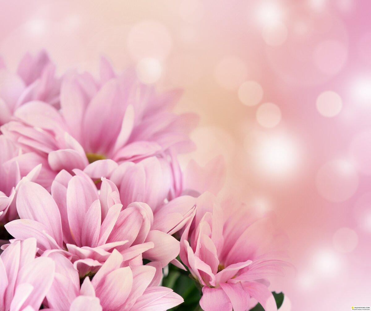 Открытка с днем рождения цветы без текста, картинка прикол