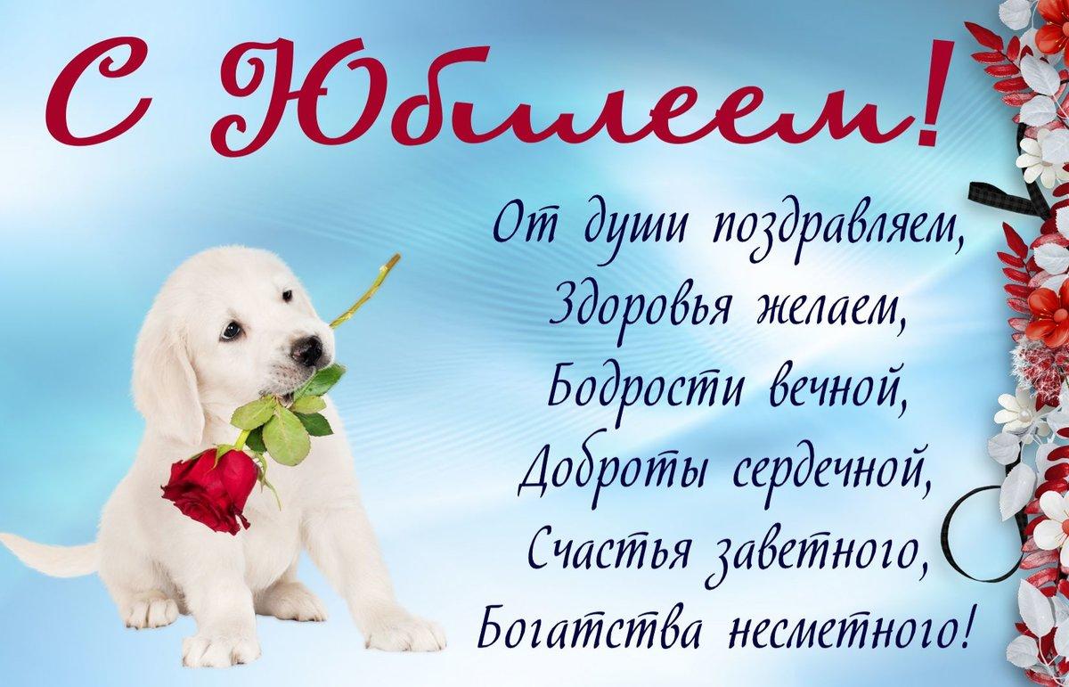 Поздравление с днем рождения собаке стих непринужденно, нежно