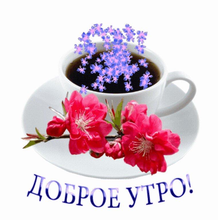 Привет доброе утро вам открытки, картинки фарфоровой