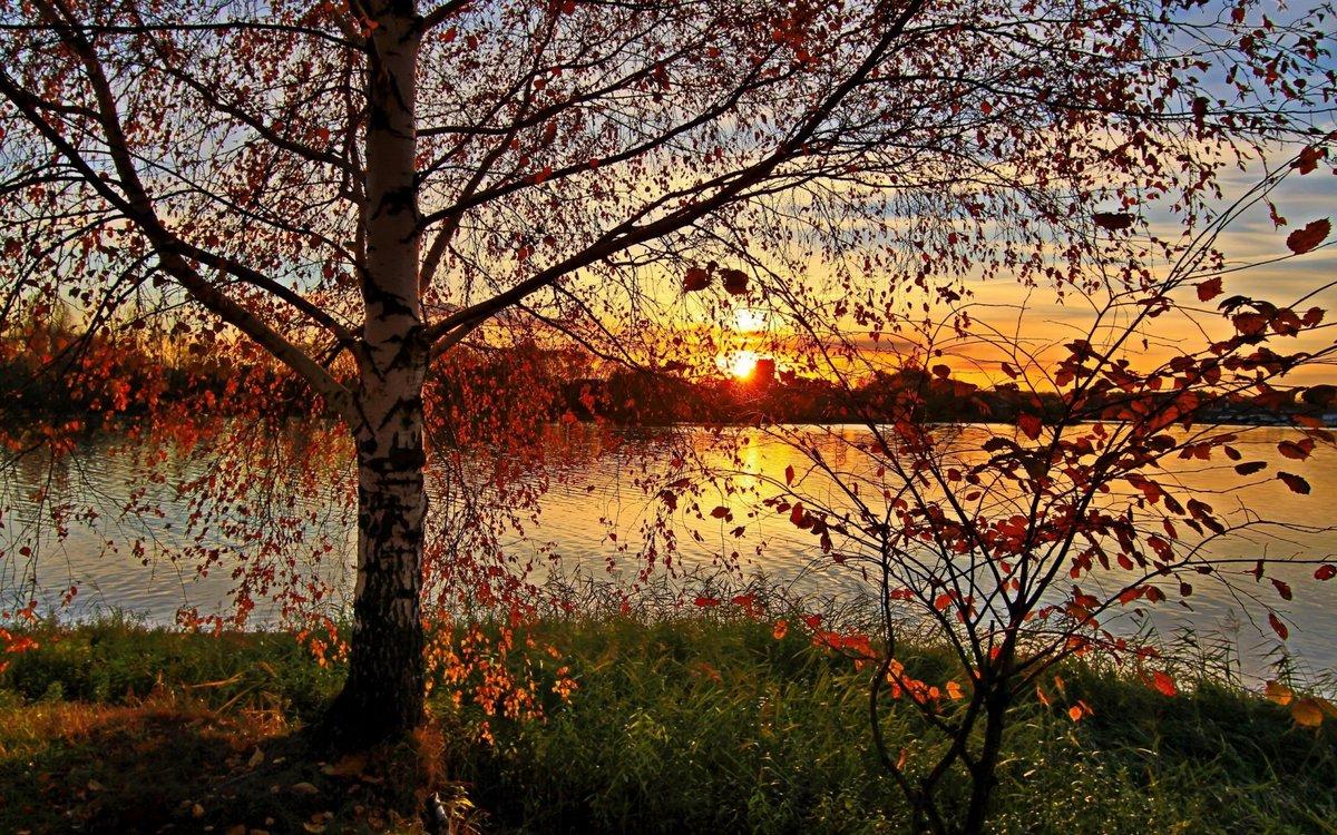 Закаты красивое ежедневное явление природы.