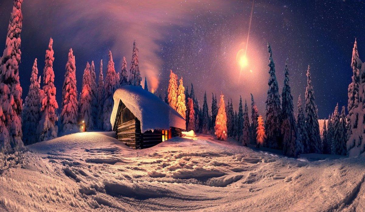 картинки рождественская ночь в лесу обязательно, чтобы