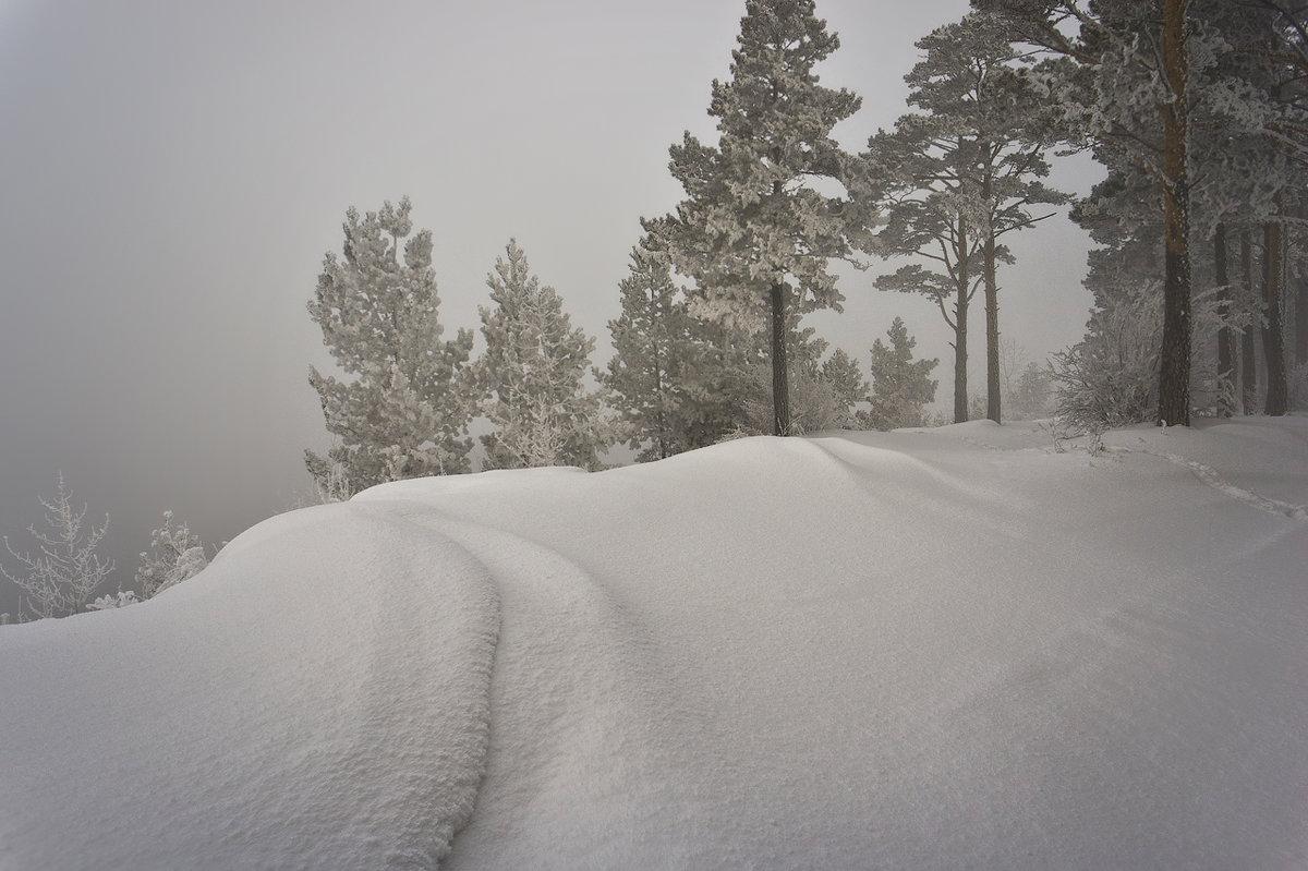 Пасмурный зимний день фото потом вдруг