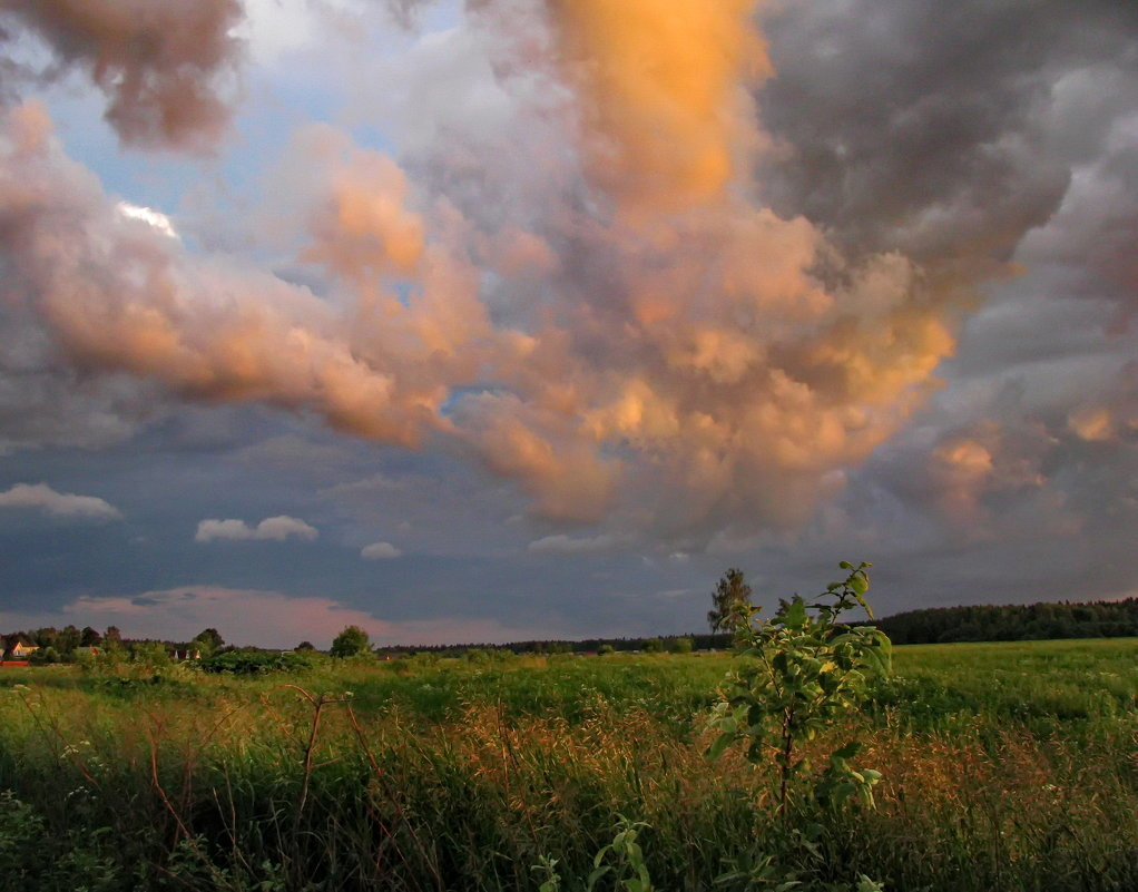 вероятно, фото облака перед дождем такие признаки, как