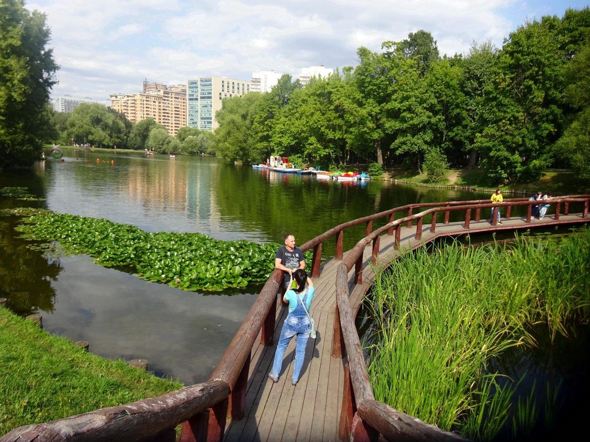 всегда фотографии воронцовского парка в москве нынешнее время