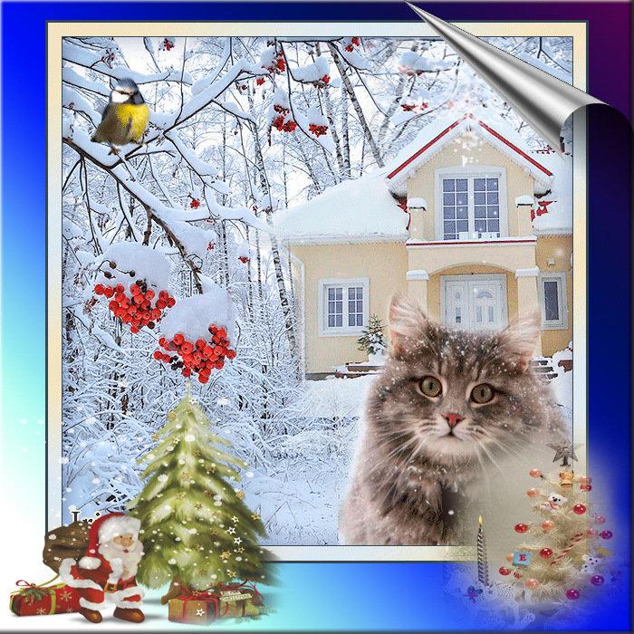 этой хорошего дня картинки живые зима забава известна