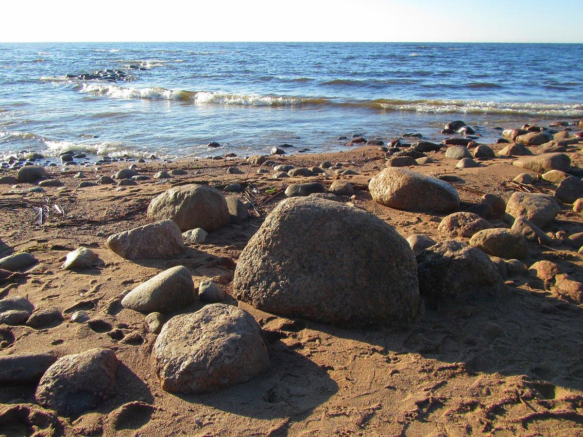 остатки репино фото финского залива превосходно