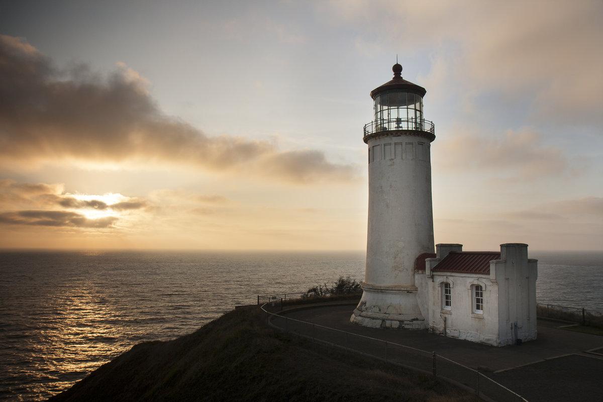 лечение фото морских маяков белых ирисов фрезии