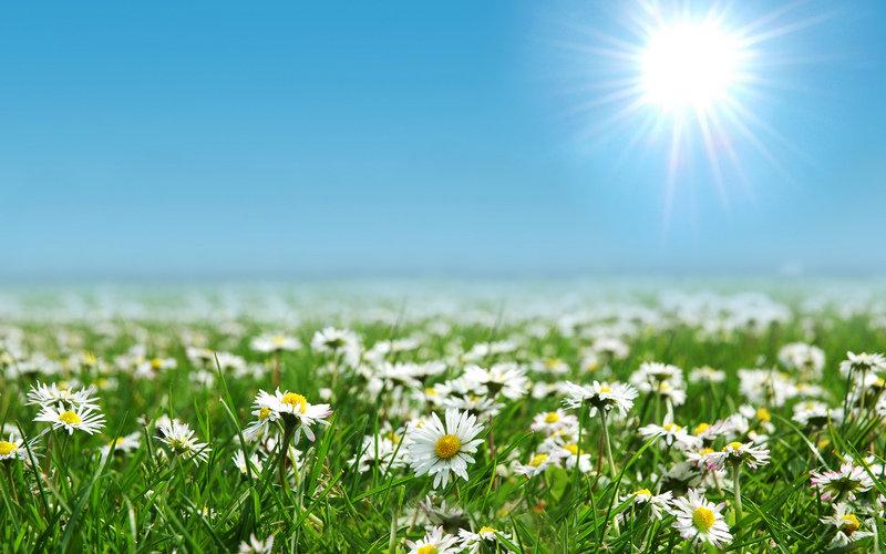 Открытка небо и солнце, месяца