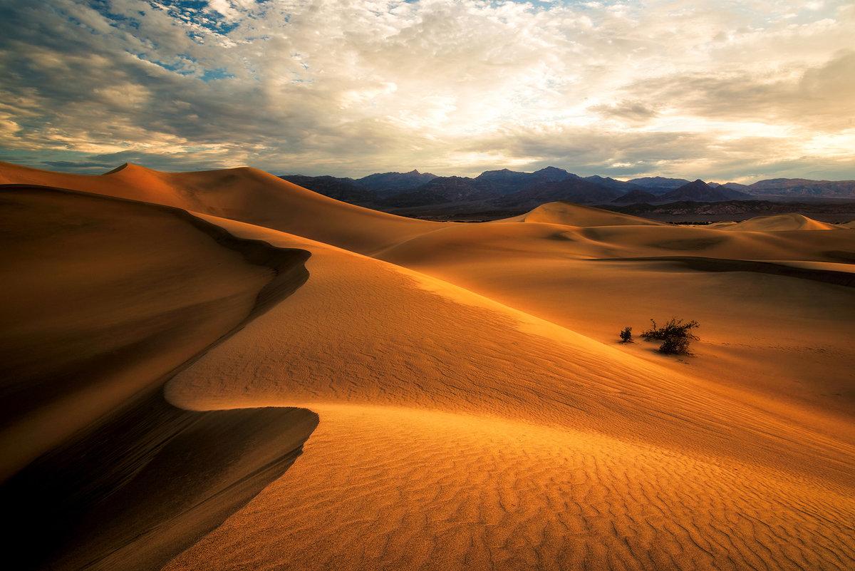 мультиварке фото в пустыне очень яркие новогодней рождественской