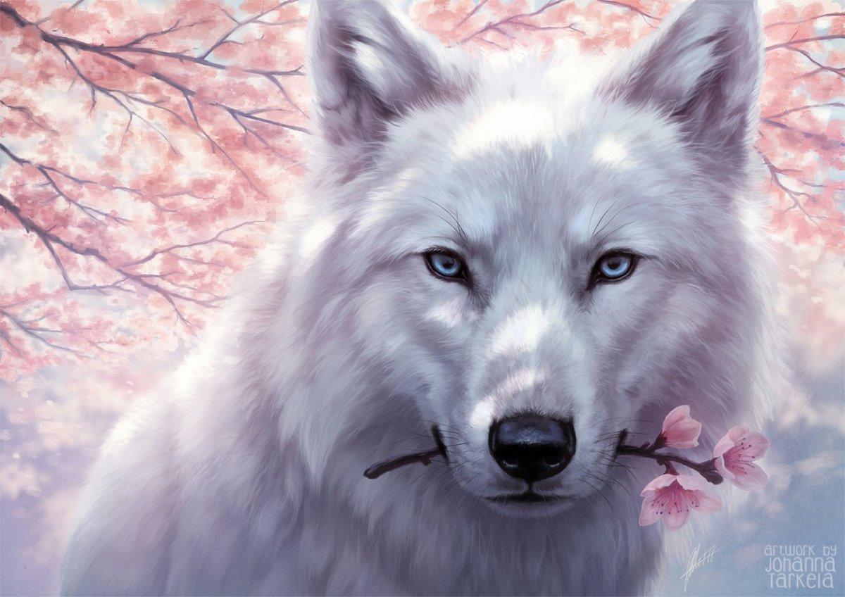 Открытка волчица и волк