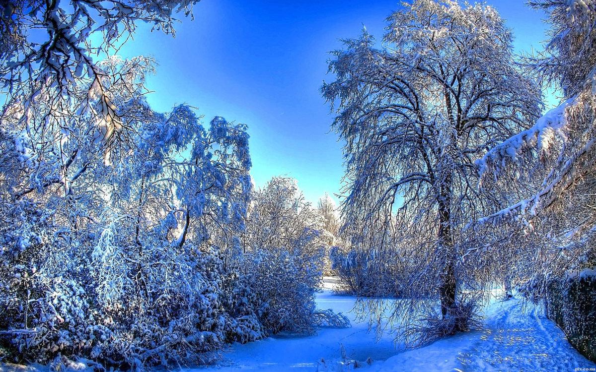 Картинки на рабочий стол на полный экран зима