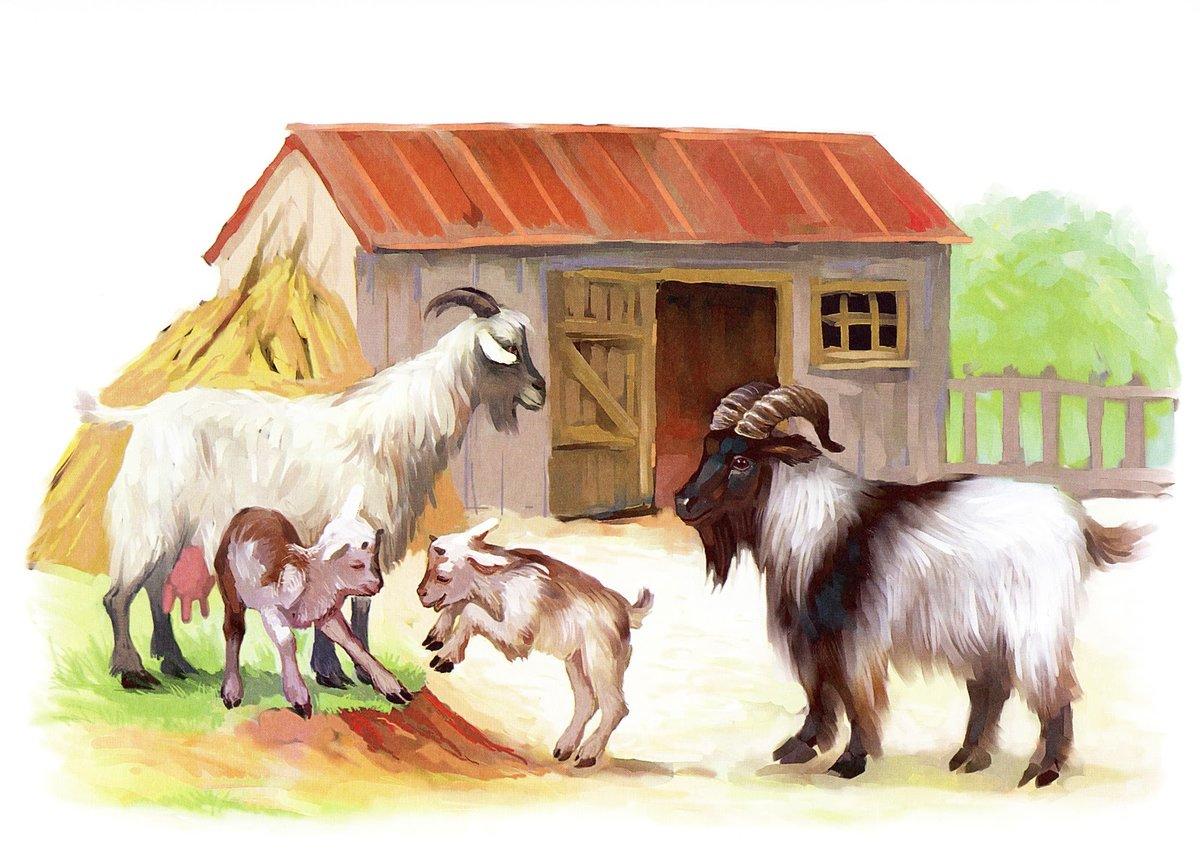 Картинки животные домашние детям