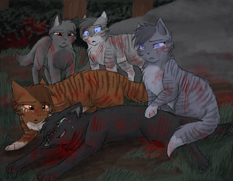 раненые коты воители картинки том, как
