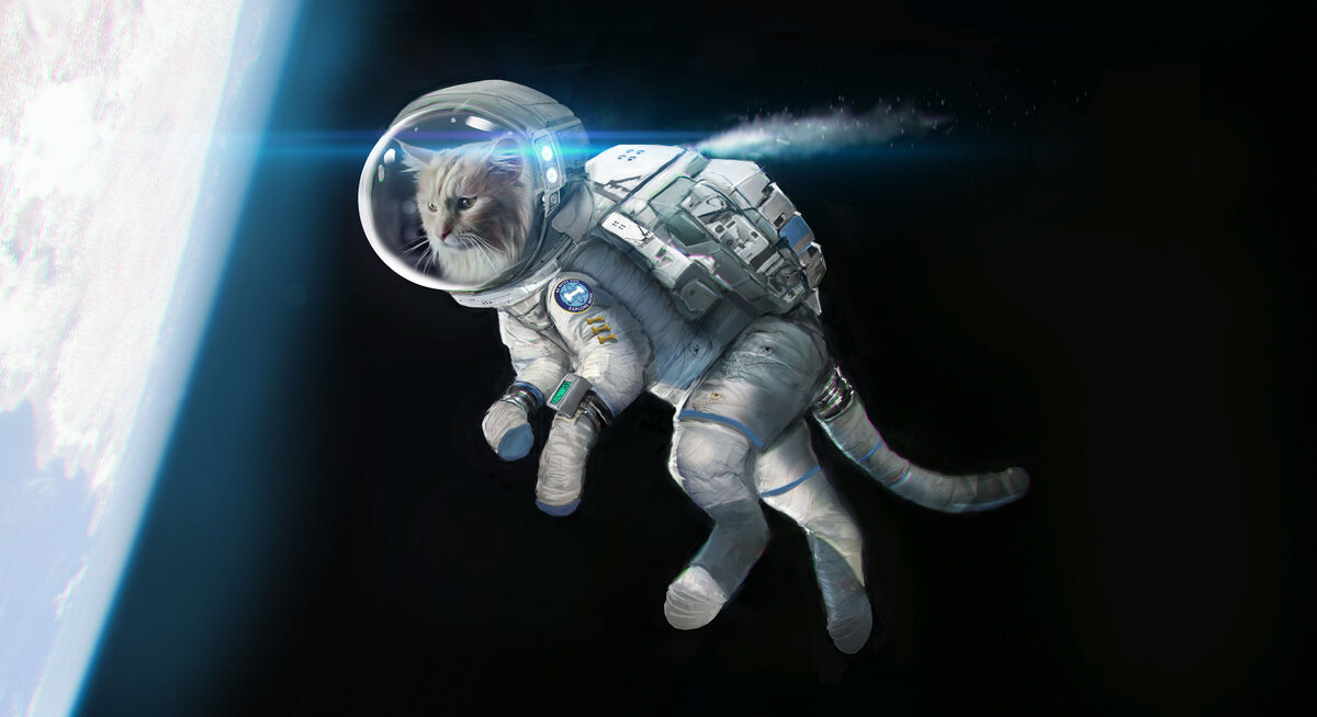 Картинки прикольных космонавтов, открытка подруге день