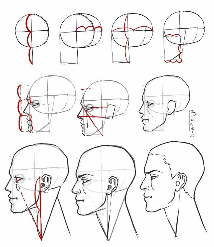 картинки как нарисовать голову человека поэтапно используйте