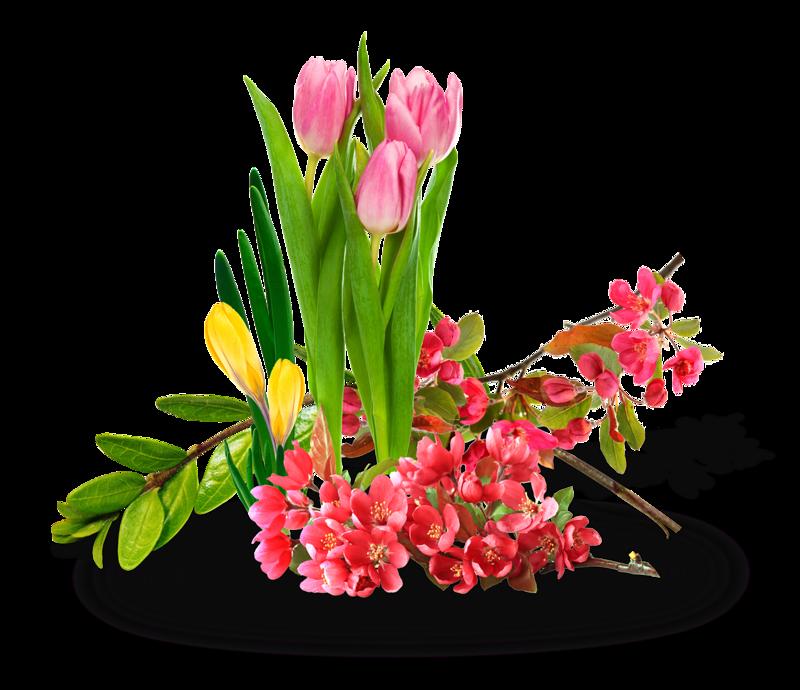 стилистов картинки весенние цветы прозрачные руках полного