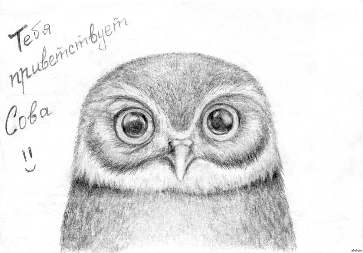 классные картинки для срисовывания простым карандашом кадры