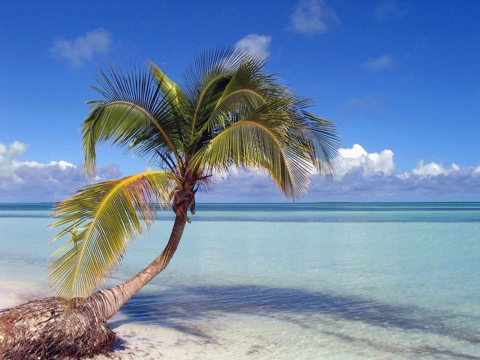 Остров кайо коко картинки