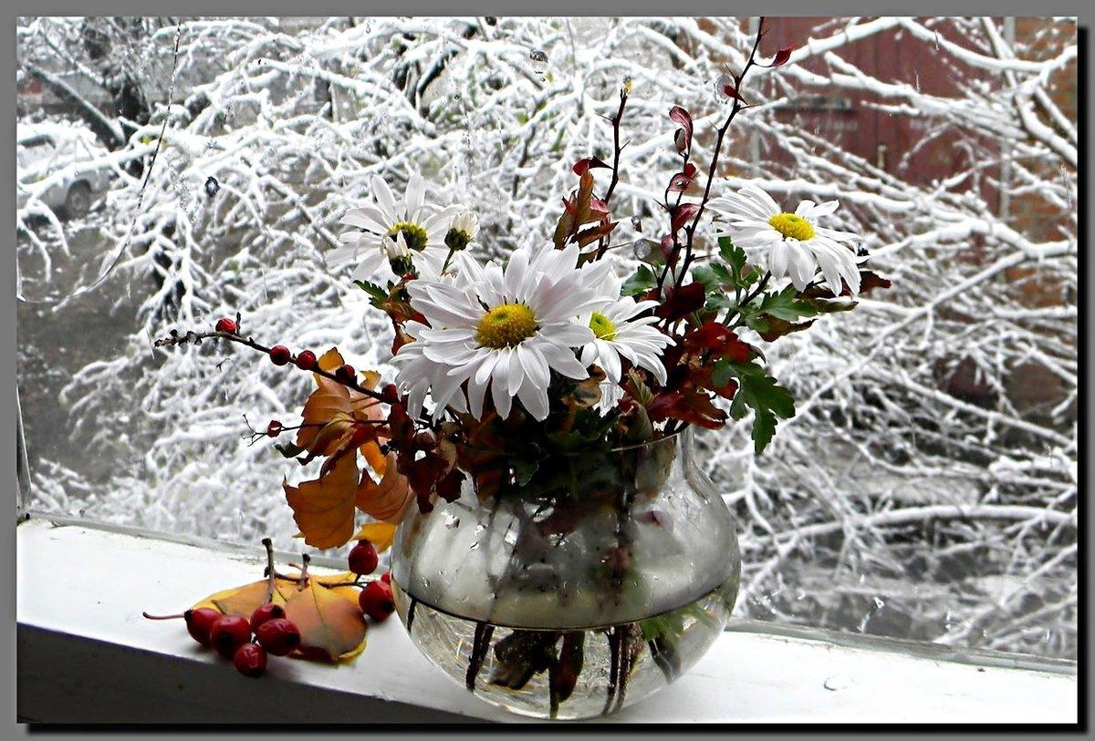 картинки доброе утро снег в апреле раскидистый, мощный
