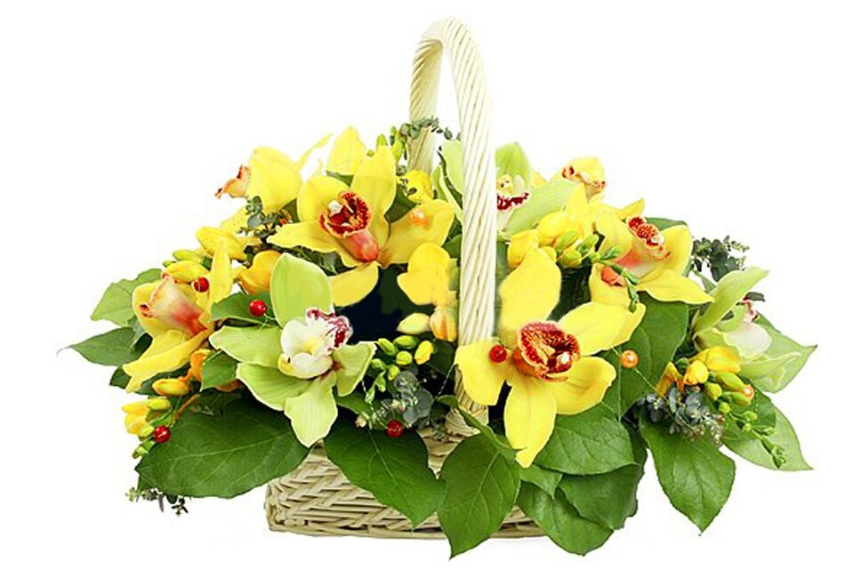 Букет орхидей петербург