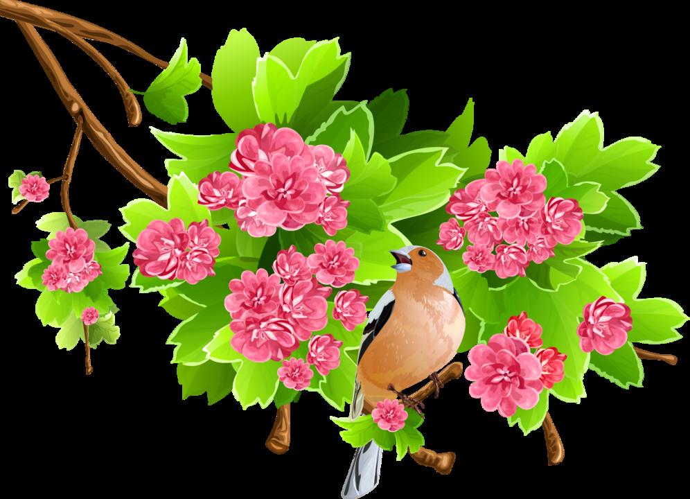 весенние цветы картинки для оформления квартиру