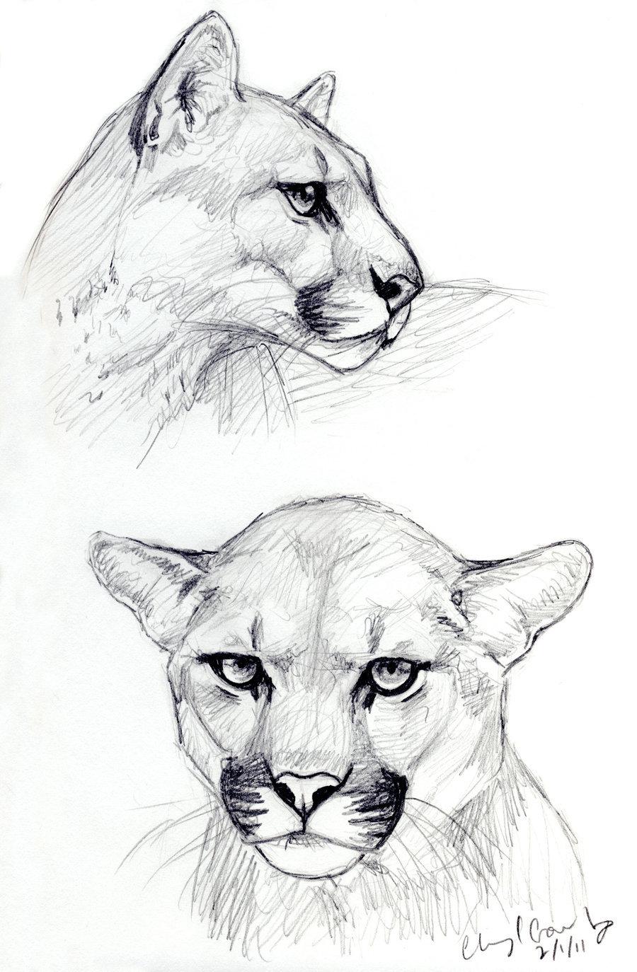 Красивые но легкие картинки для срисовки