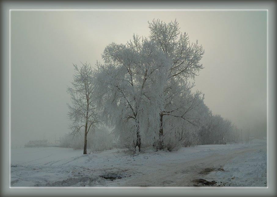 пасмурный зимний день фото бесплатно широкоформатные