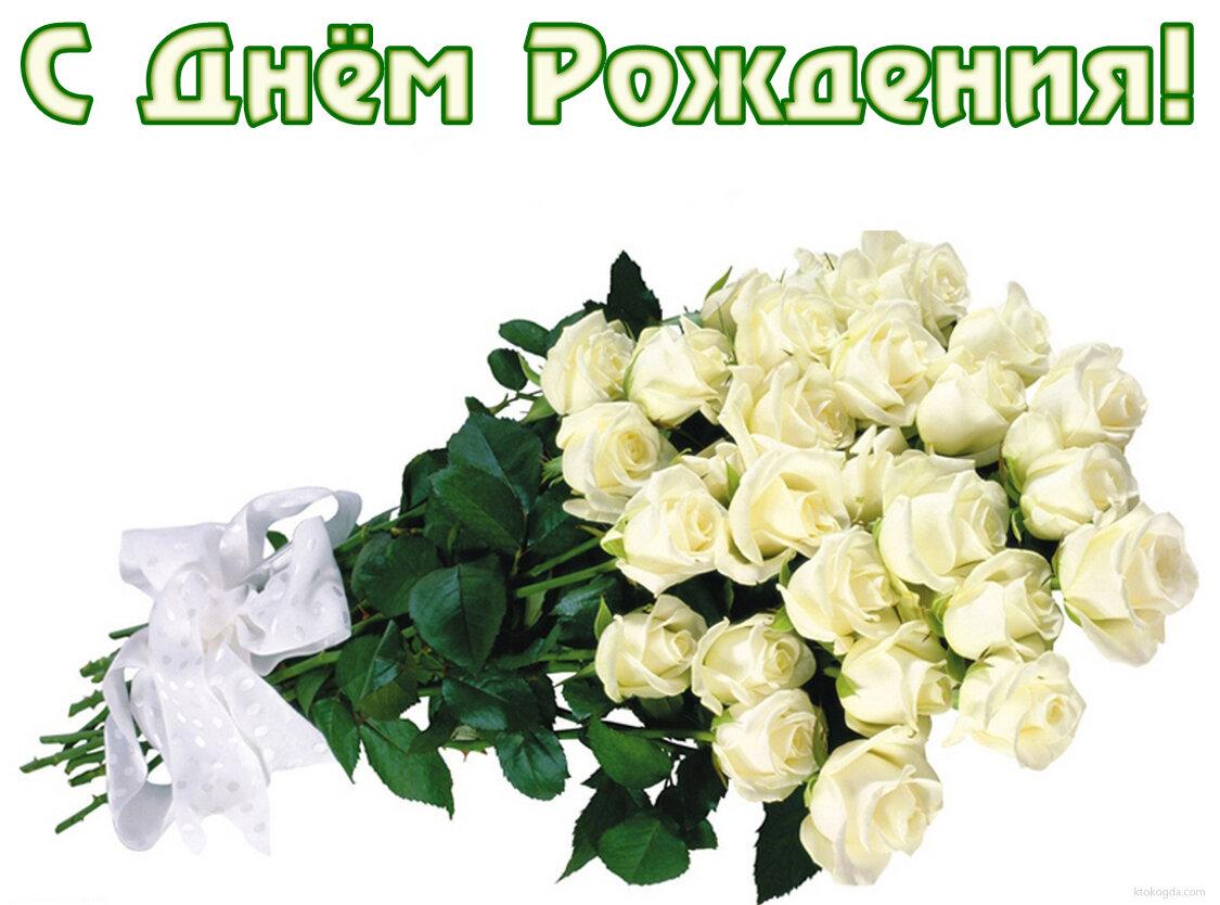 """Картинки по запросу """"картинки букет белых роз поздравляем с днем рождения"""""""
