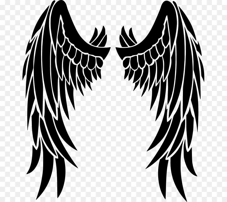 Картинки крыло ангела, открытки
