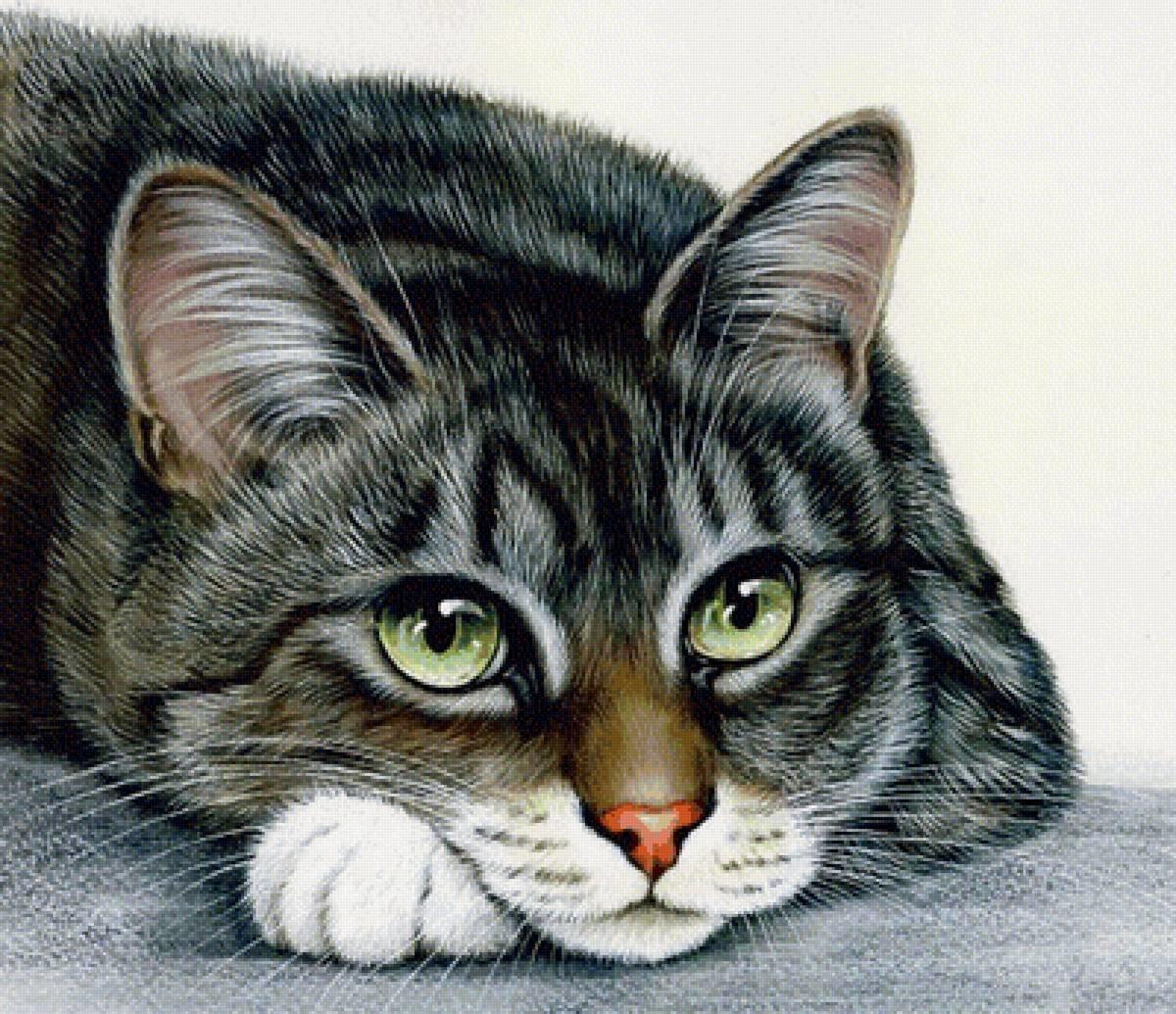 открытки с котами гармашовой даже те
