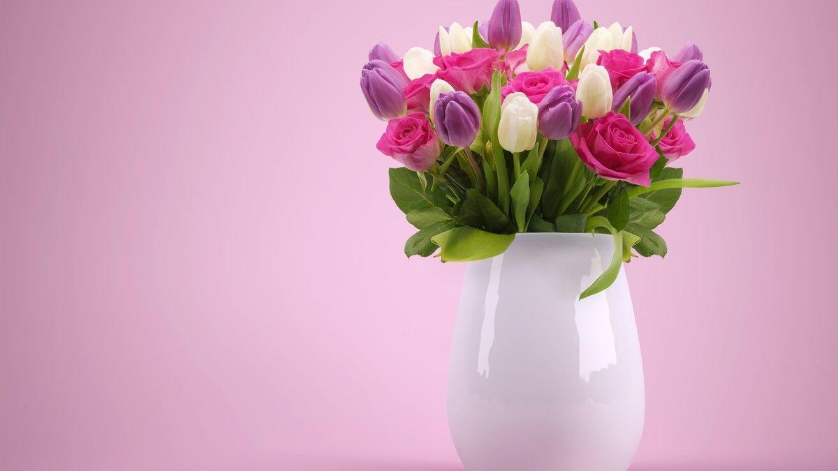 Мир, цветы картинки роза тюльпаны