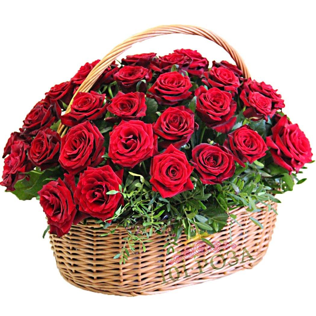 Картинка раскраска, открытки корзина розовых роз