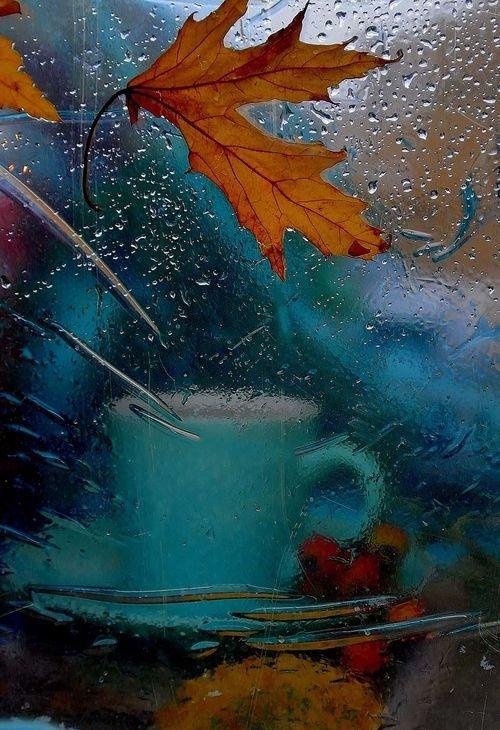 Открытка, открытки осень и дождь