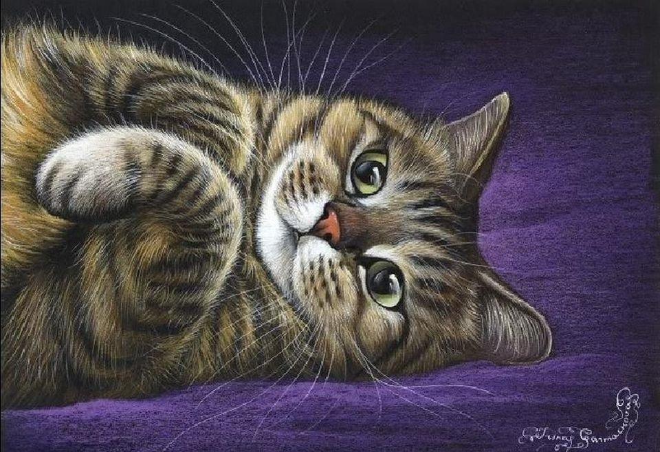 картинки коты художницы ирины уточнят глубокие ценители