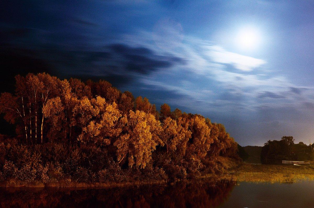 Ночная осень фото