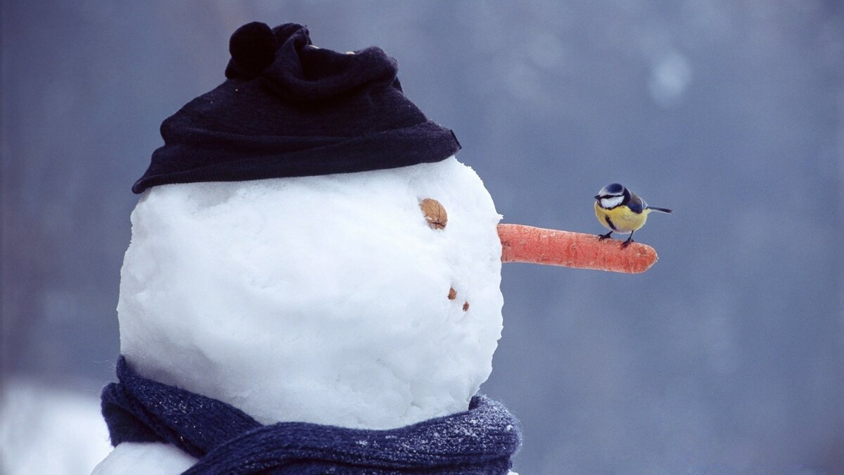 Картинка прикольная снеговик