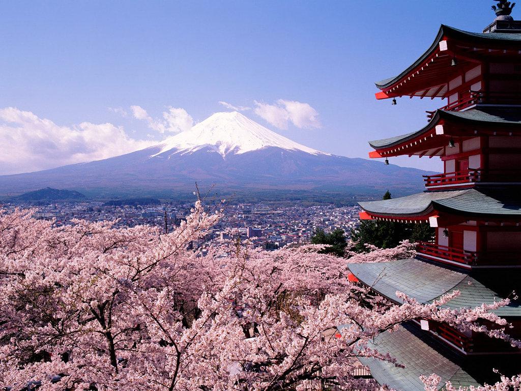 Японская сакура картинки, поздравление картинках марта