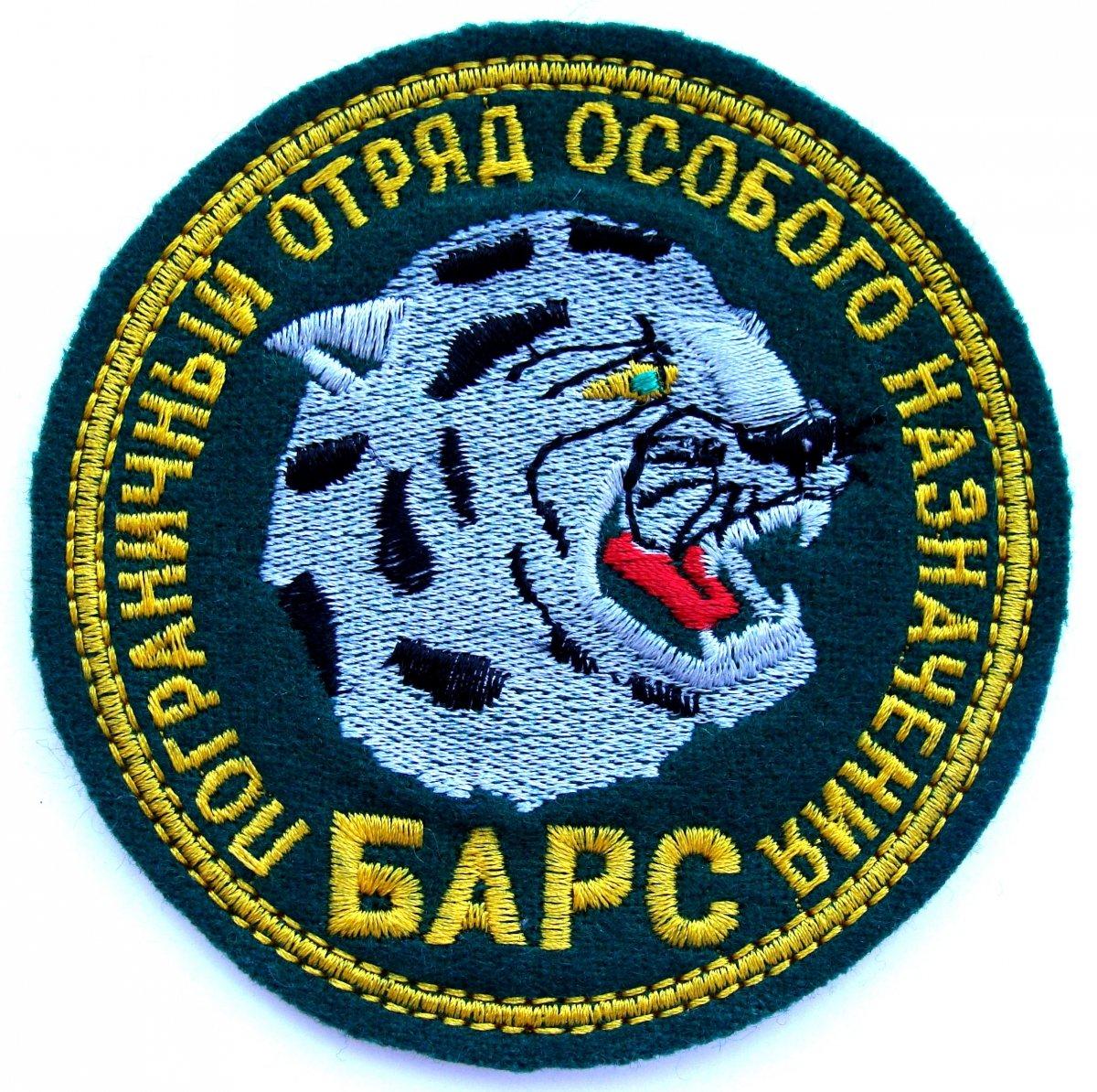 эмблема спецназа разведки пограничных войск фото декоративная штукатурка лучше