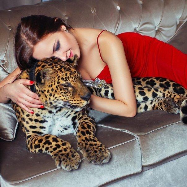 веденеева фотосессия с леопардом размеры