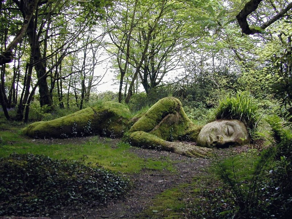 Сад прикольные картинки